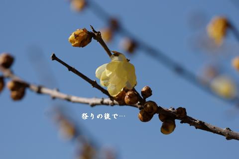 f0232254_0323932.jpg