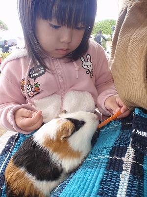 移動動物園_c0180460_22263727.jpg