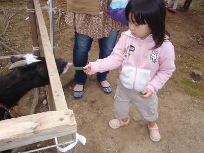移動動物園_c0180460_2226445.jpg