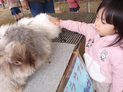 移動動物園_c0180460_22282310.jpg