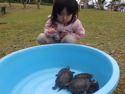 移動動物園_c0180460_2229154.jpg