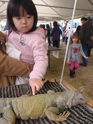 移動動物園_c0180460_22294922.jpg