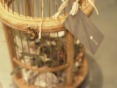 鳥かご_e0149863_23311492.jpg