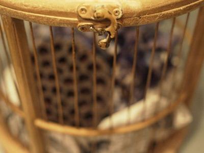 鳥かご_e0149863_23312929.jpg