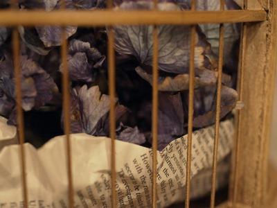 鳥かご_e0149863_23313243.jpg