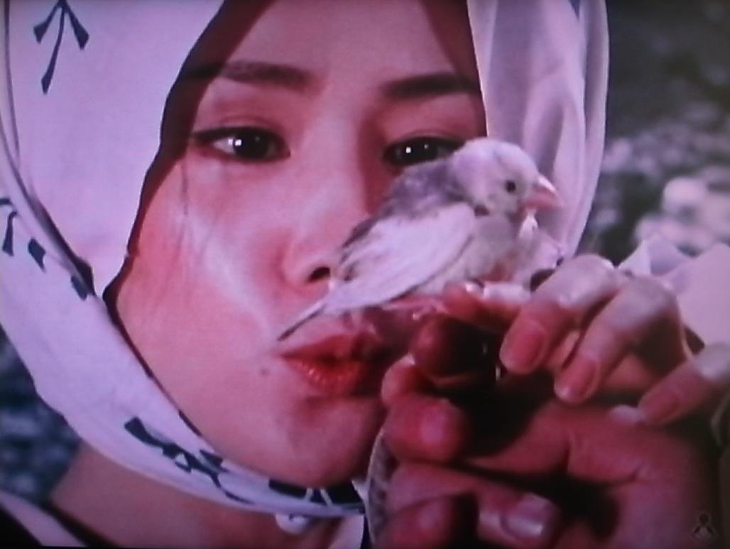 新座頭市『雪の別れ路』ゲスト:吉永小百合 監督:勝新太郎[1]_f0134963_8525990.jpg