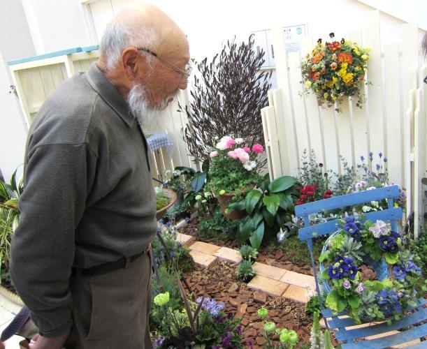 第4回パンジー・ビオラ個人育種家の展示会・最終日のお客様は花咲かじいさんそして、東京、山梨から_b0137969_16432043.jpg