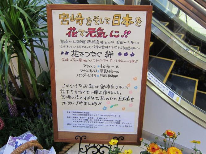 第4回パンジー・ビオラ個人育種家の展示会・最終日のお客様は花咲かじいさんそして、東京、山梨から_b0137969_18104140.jpg