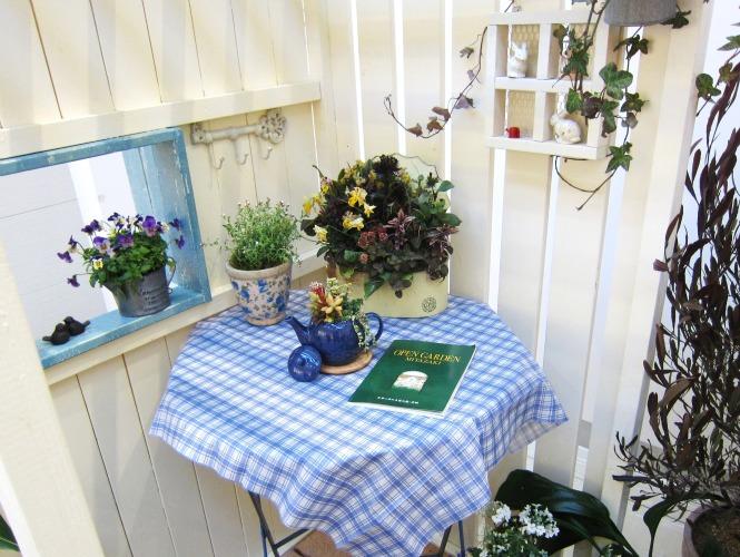第4回パンジー・ビオラ個人育種家の展示会・最終日のお客様は花咲かじいさんそして、東京、山梨から_b0137969_1883493.jpg