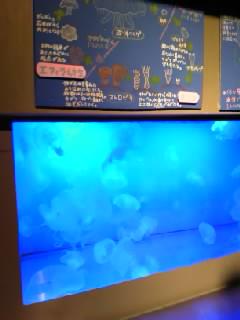 雪の動物園_b0097073_20305663.jpg