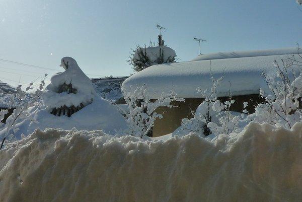 雪景色に驚嘆③_d0030373_2322741.jpg