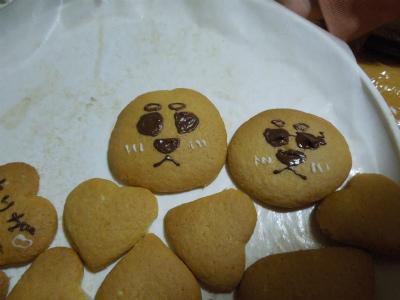 大地クッキーと、新しいベット_f0218911_2551335.jpg