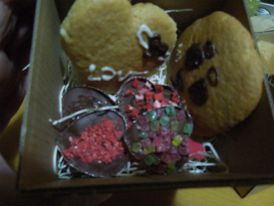 大地クッキーと、新しいベット_f0218911_256237.jpg