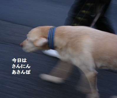 b0226221_20513649.jpg
