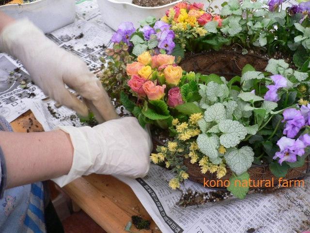 春の予感!!リースハンギング♪_d0159033_22435767.jpg