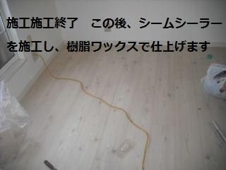 f0031037_19401622.jpg