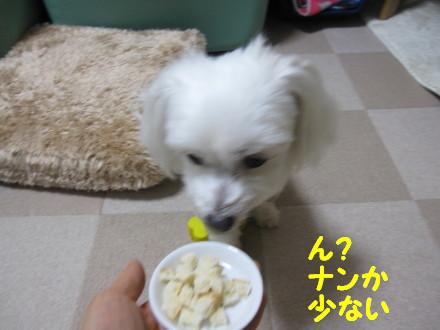 b0193480_12172015.jpg