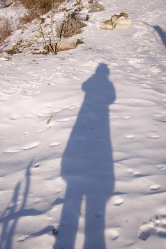 雪の下にはパン~2月の畑_f0106597_22454368.jpg