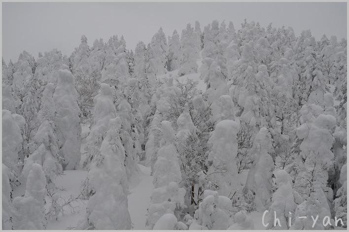 蔵王の樹氷と銀山温泉_e0219011_1815891.jpg