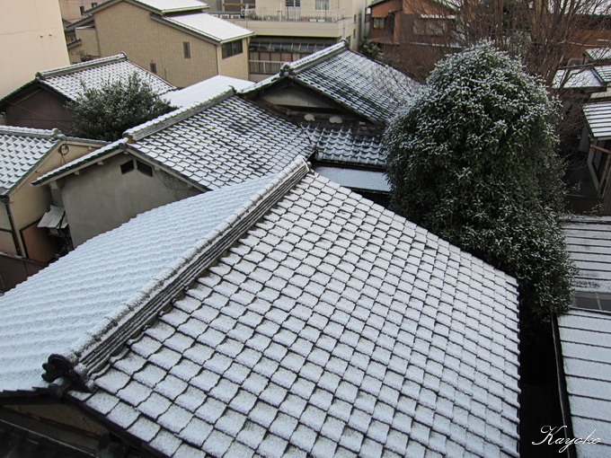 京都_a0086828_1633672.jpg