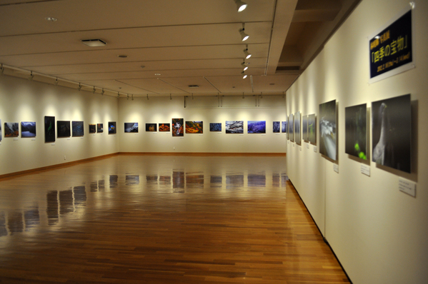 東川町文化ギャラリー展示情報_b0187229_12521969.jpg