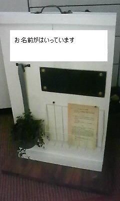 d0085448_200414.jpg