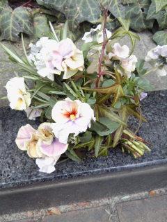The Garden!  Vol.2_a0229658_17183371.jpg
