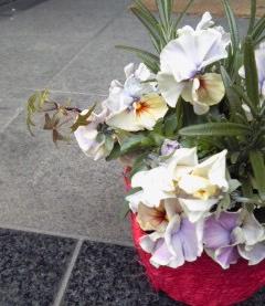 The Garden!  Vol.2_a0229658_17185692.jpg