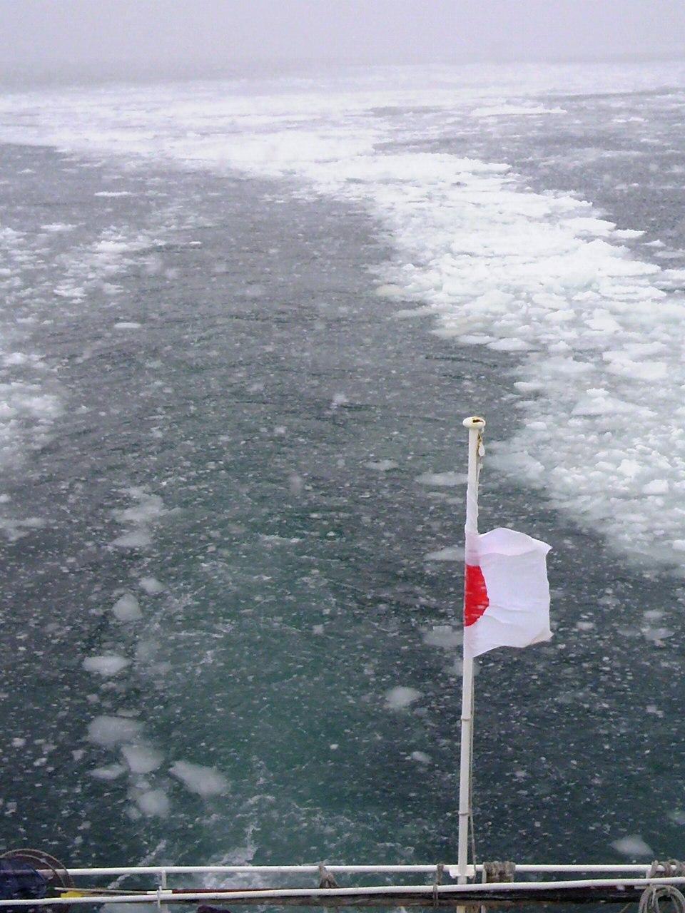 流氷!!!_b0097073_2223993.jpg