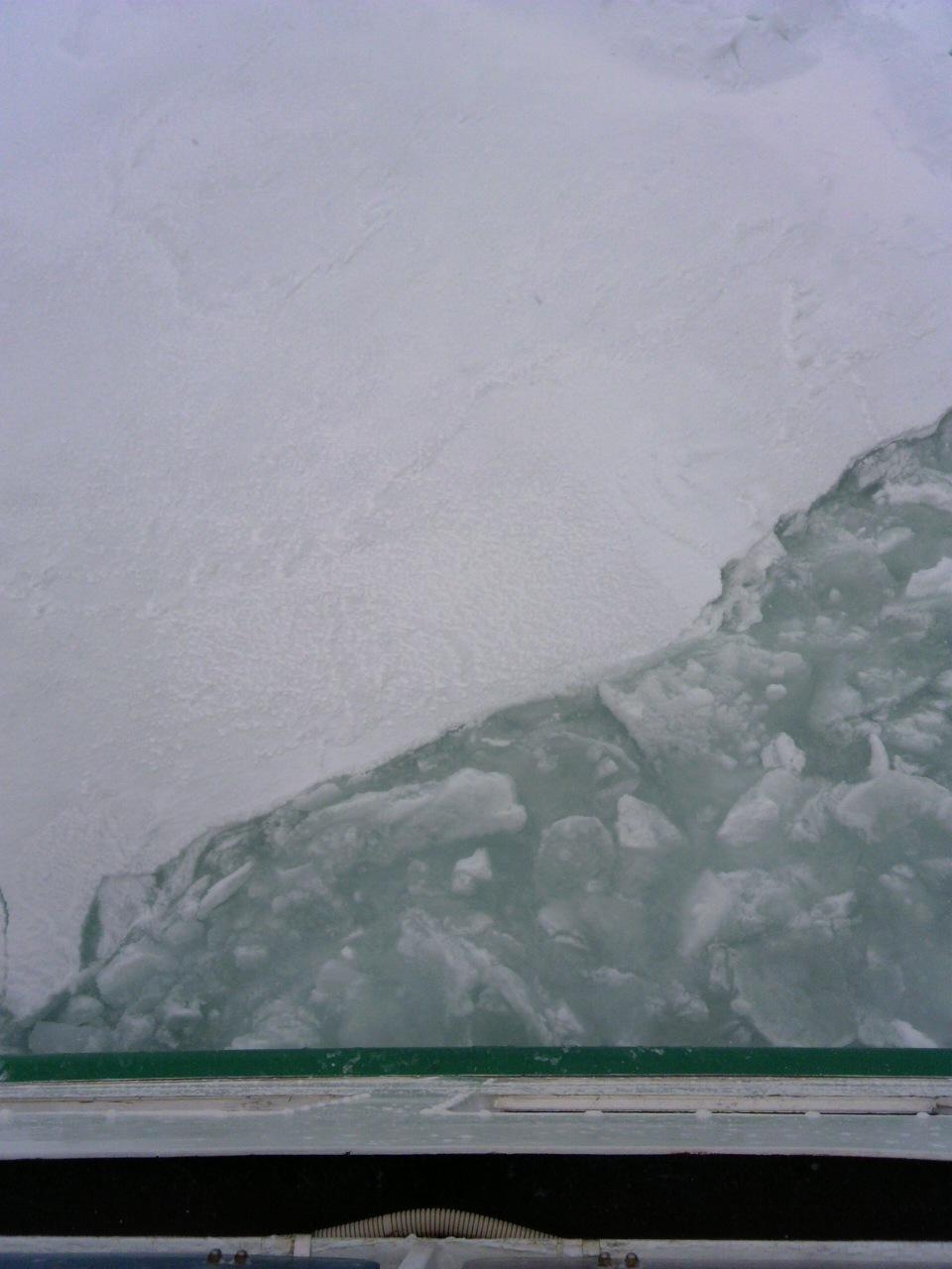 流氷!!!_b0097073_2223999.jpg