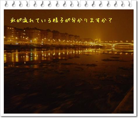 b0078675_19562315.jpg