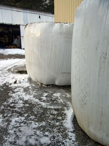凍みサイロ_f0236291_10574223.jpg