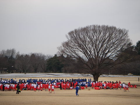 記念公園通信_b0172896_18713100.jpg