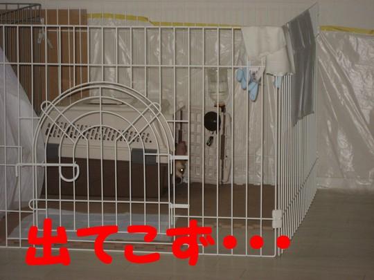 b0210702_22194652.jpg