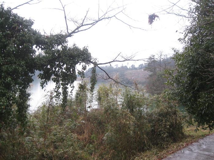 雨の冒険散策☆_a0125419_16432998.jpg