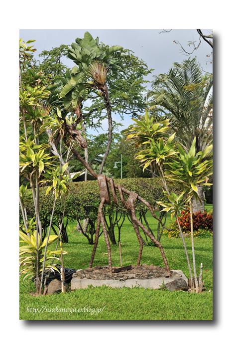 さかなや家族 旅行 in Hawaii 〜 3日目 〜 Honolulu Zoo_d0069838_10291022.jpg