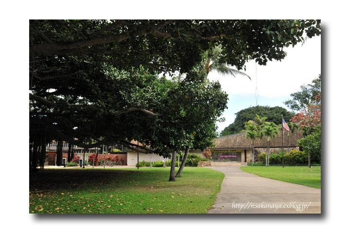 さかなや家族 旅行 in Hawaii 〜 3日目 〜 Honolulu Zoo_d0069838_10381192.jpg