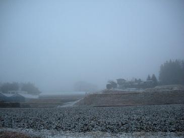 しっとり風景・・・霧の小淵沢_a0211886_23361924.jpg