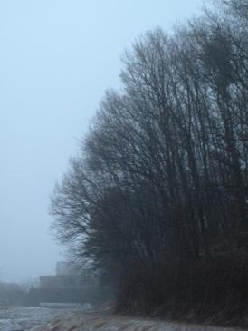しっとり風景・・・霧の小淵沢_a0211886_23391689.jpg