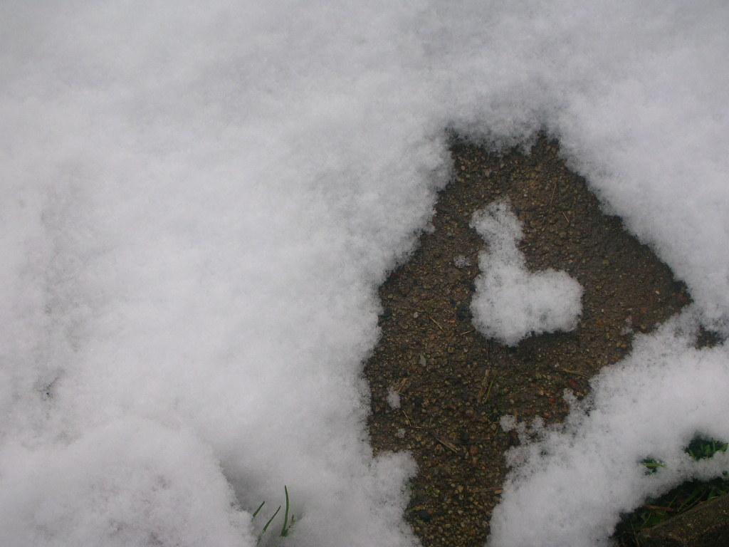 sweet & lovely  , snow_f0146802_22443942.jpg