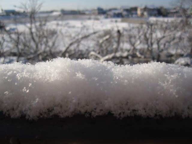 雪_c0200314_925910.jpg