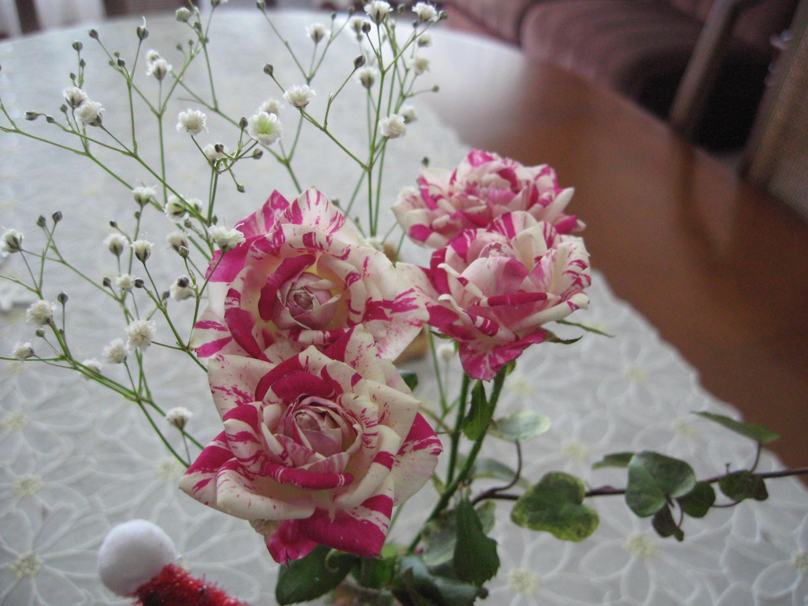 珍しい色の薔薇_f0146620_10233984.jpg