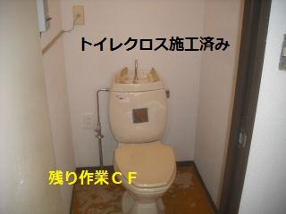 f0031037_214778.jpg