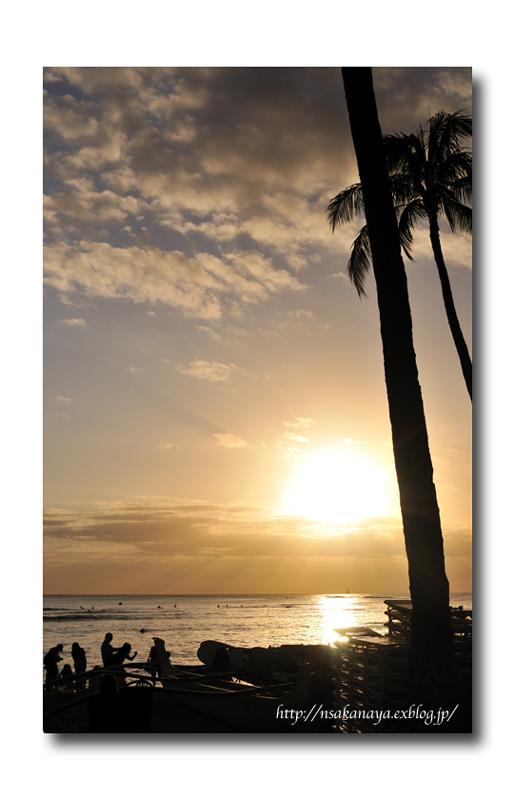 さかなや家族 旅行 in Hawaii 〜 3日目 〜 Kuhio Beach Hula Show_d0069838_126643.jpg