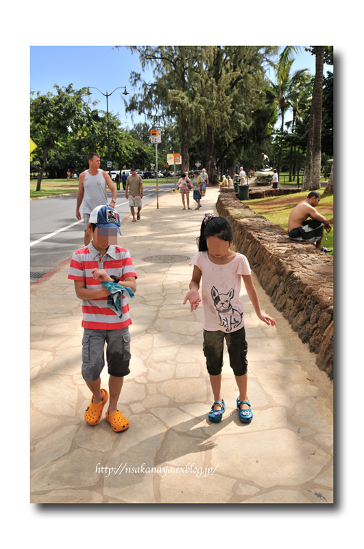さかなや家族 旅行 in Hawaii 〜 3日目 〜 Waikiki Aquarium_d0069838_9253067.jpg