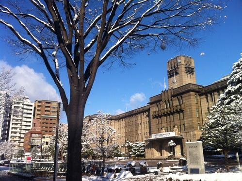 雪化粧。_e0170538_16353180.jpg