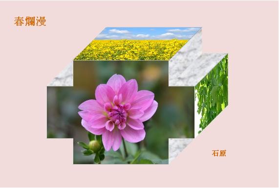 b0216452_17564641.jpg