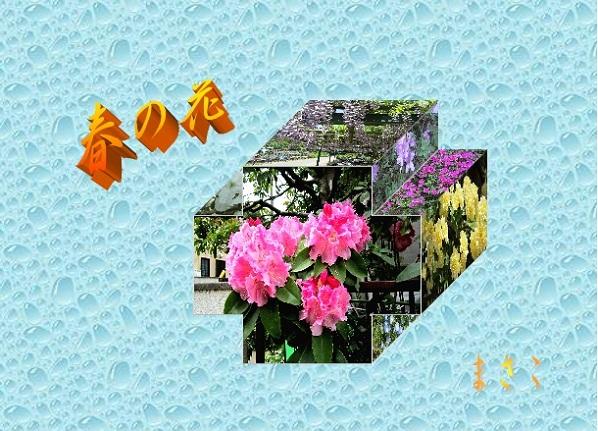 b0216452_1781112.jpg
