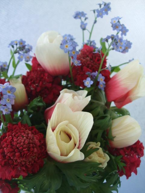 オークリーフ(カラフルな春の花束)_f0049672_1135493.jpg