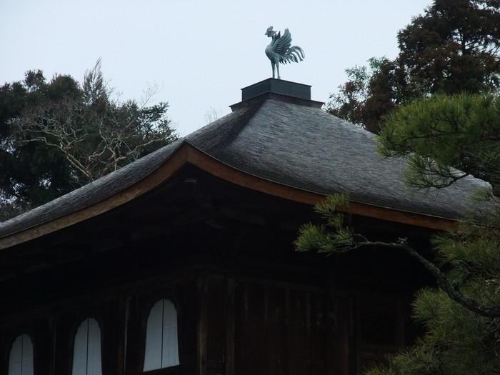 名古屋地裁平成24年2月17日判決,藤田保健衛生大病院医師のコイル塞栓術のワイヤ操作の過失を認める_b0206085_13111720.jpg